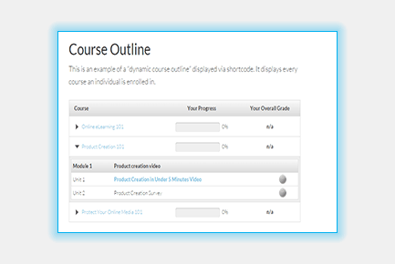 Packages - Course Outline Blue