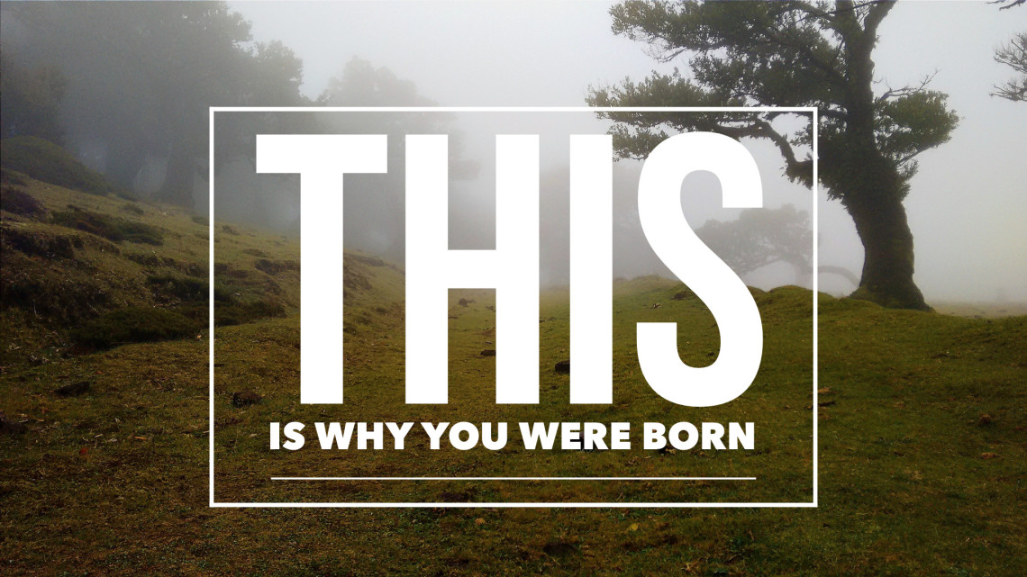 This-Is-Why-You-Were-Born-1140x641