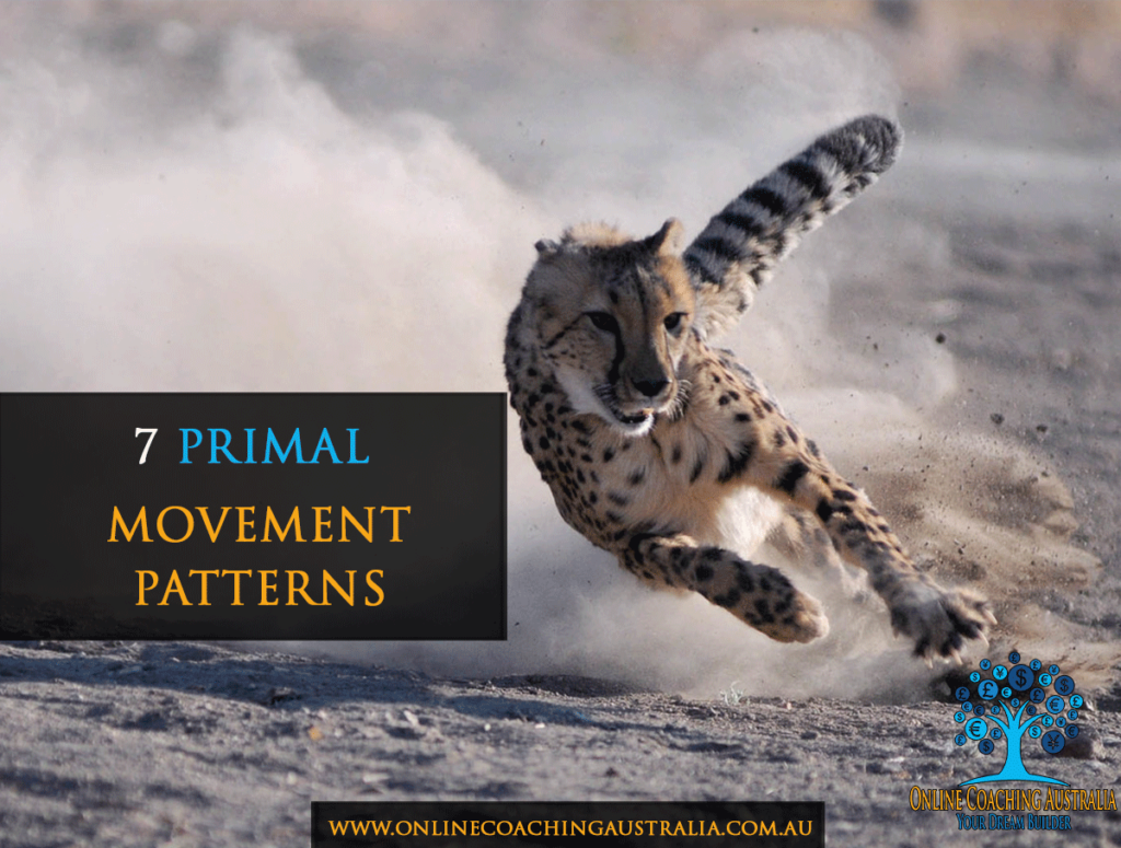 7-primal-movement-patterns-oca